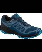 Meeste jalatsid XA Discovery Gore-Tex, sinine 11