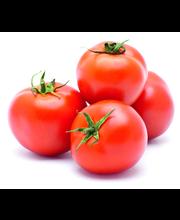 Tomat, II klass