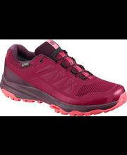 Naiste jooksujalatsid XA Discovery GTX, punane 5