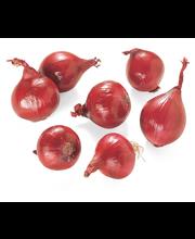 Punane mugulsibul, II klass, pakitud, 500 g
