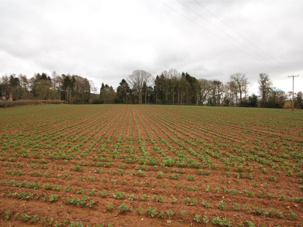 Lot 1 - Land At Cradley
