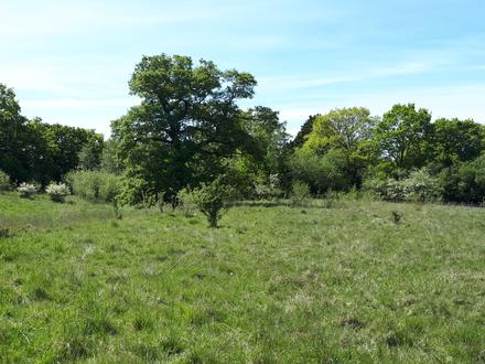 4.20 acres strategic/amenity land