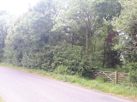 2.13 acres of Woodland