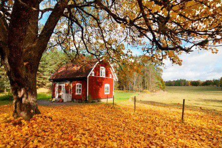 Az ország fele ősrégi lakásokban él – Hogyan újítsd fel a lakásod?