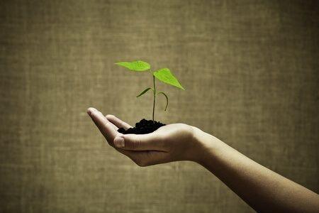Növekedési Hitel utolsó percei: most, vagy soha…