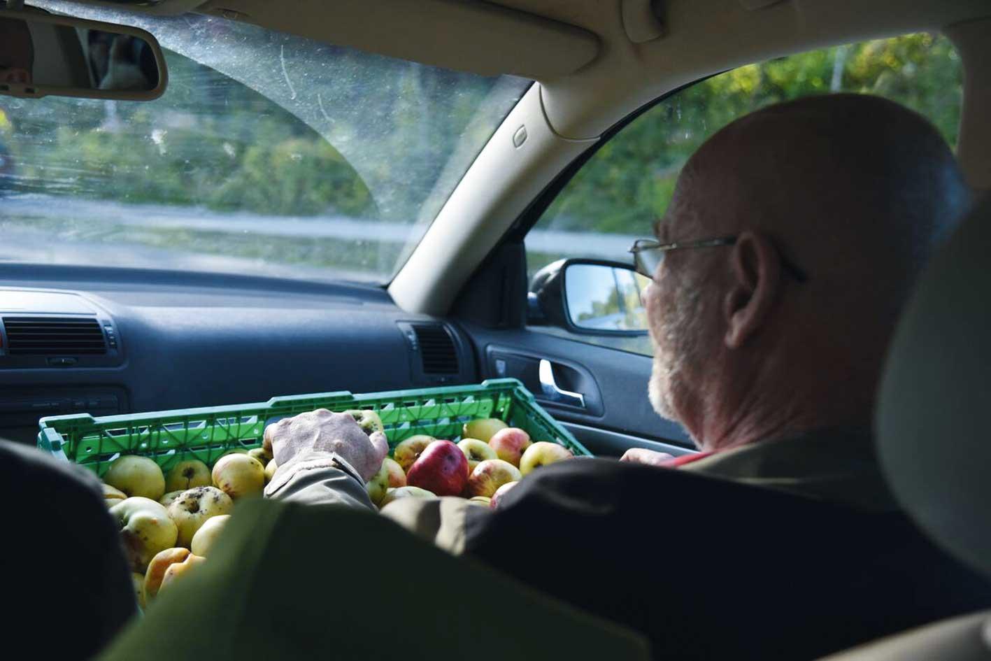 Bilen full av epler og den siste kassen går på fanget til Stein.