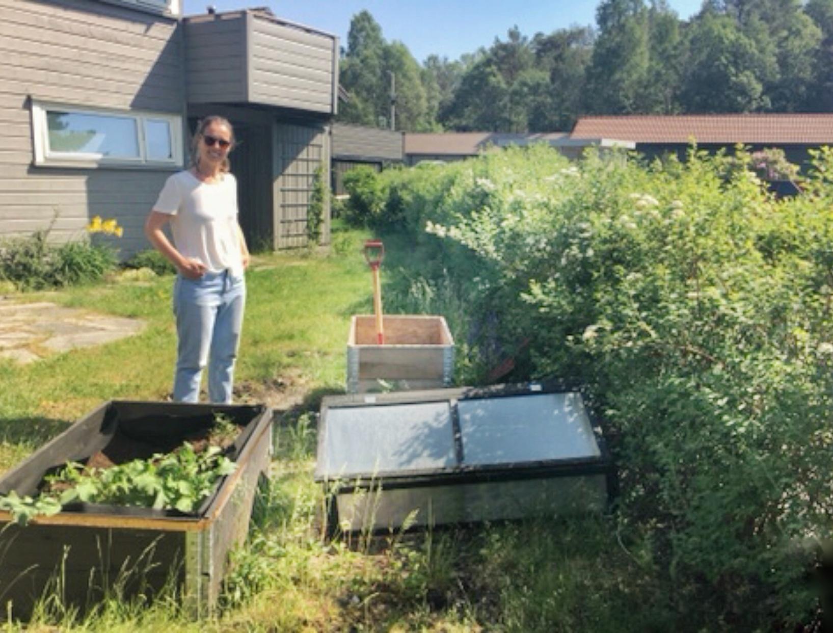 Hekken har fått masse kompost rett i jorden