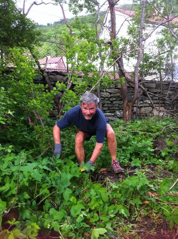 Hagelaget jobber med å rydde fram hagen og planlegger hvordan den skal settes i stand med elementer av den historiske hagen. Her er det Nils Fløisand som tar et godt tak.