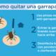 Garrapata infografia 2