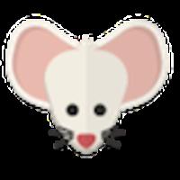 Dolor al contacto en roedores, hyamster ruso blanco