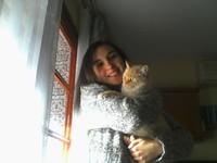 Tengo dudas sobre el comportamiento de Blanca, mi gato cruce de persa tradicional hembra