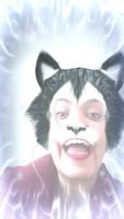 Estornudos en gatos, Alemán de pelo largo