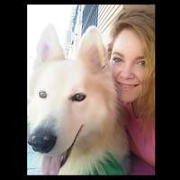 Edema en la piel en perros, Samoyedo