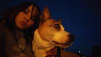 Crecimiento anormal de las uñas en perros, Ratonero bodeguero andaluz