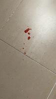 Sangrado en pene en perros, Desconocida
