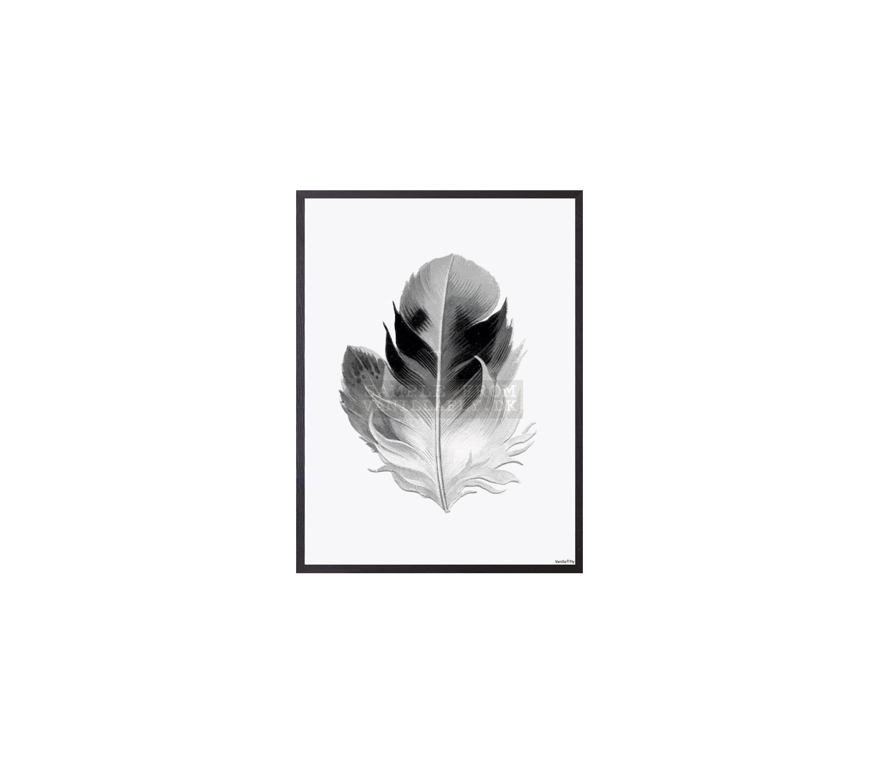Poster Veer zwart/wit incl. frame hout 20x25 cm - S