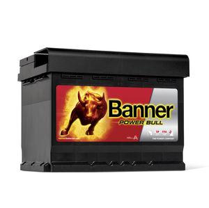 Banner Car Battery Power Bull Type 027 (P6219)