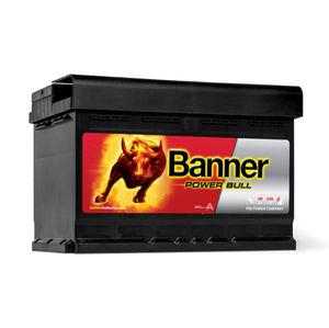 Banner Car Battery Power Bull Type 100 (P7209)