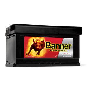 Banner Car Battery Power Bull Type 110 (P8014)