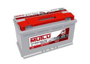 Mutlu Car Battery Type 110