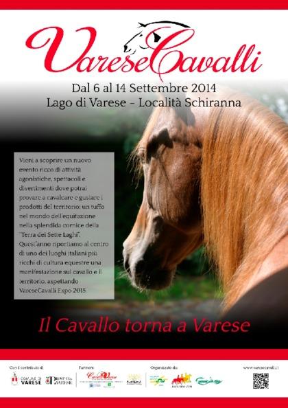 VareseCavalli 2014