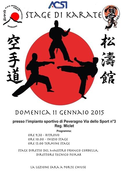 Stage KARATE a Peveragno (Cn) 2015 gen 11
