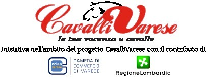 Corso CavalliVarese