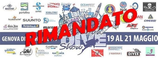 RIMANDATO - Dive Show