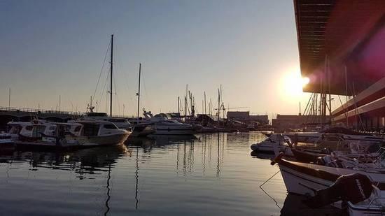Immersioni a Genova e Portofino
