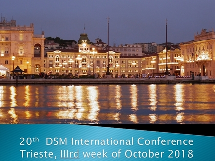 20th International DSM conference