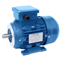 0.55kW/0.45kW 2 & 4 Pole Constant Torque Two Speed B34 Foot & Face Mount Motor
