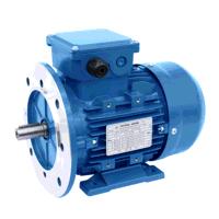 0.55kW/0.45kW 2 & 4 Pole Constant Torque Two Speed B35 Foot & Flange Mount Motor