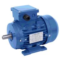 1.25kW/0.6kW 4 & 8 Pole Constant Torque Two Speed B3 Foot Mount Motor