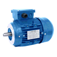 8kW/6.6kW 2 & 4 Pole Constant Torque Two Speed B14 Face Mount Motor
