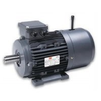 0.25kW 6 Pole Braked Motor (Foot Mount)
