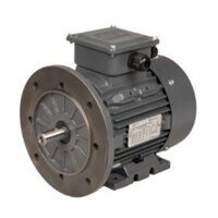 Cast Iron Frame Electric Motors