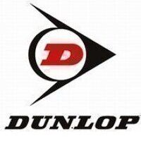 6008-2RS Dunlop Sealed Ball Bearing