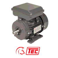 TEC Electric Motor 3kW 1ph Cap/Cap 240V 4 Pole Foo...