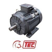 TEC IE2 Electric Motor 55kW 3ph 4 Pole Foot Mounte...