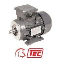 TEC IE1 Electric Motor 0.25kW 3ph 6 Pole B34 Foot ...