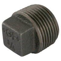 GF291-112N 1.1/2inch BSP George Fisher Hollow Plug...