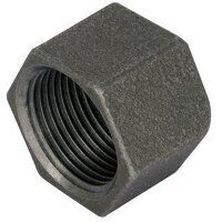 GF300-38N 3/8inch George Fisher Caps, Hexagonal, F...