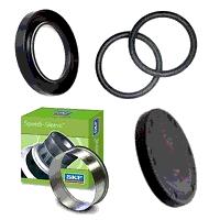 Oil Seals & O-rings