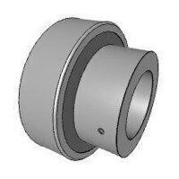 RALE20NPP 20mm INA Bearing Insert