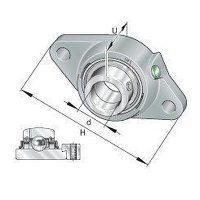RCJT40 40mm INA 2 Bolt Flanged Bearing