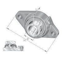 RCJTZ40 40mm INA 2 Bolt Flanged Bearing