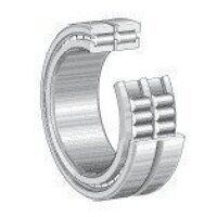 SL185009C3 INA Cylindrical Roller Bearing 45mm x 7...