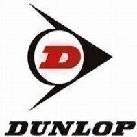 SPAX690 Cogged Wedge Belt - Dunlop (XPA690)