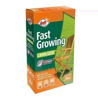 Fast Growing Lawn Seed 500g