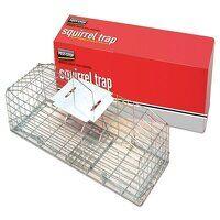 Squirrel Cage Trap 24in